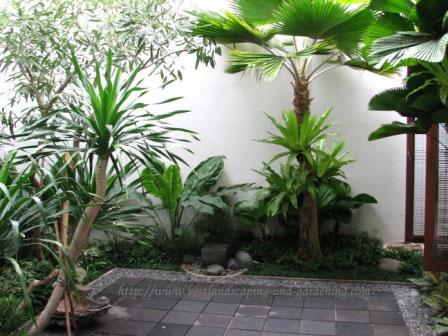 landscape dan gardening jasa desain taman dan pengerjaan