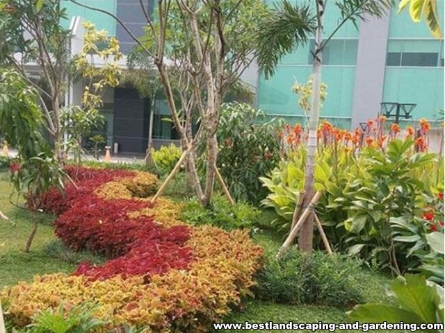 Desain dan Pengerjaan Taman Kantor / Gedung