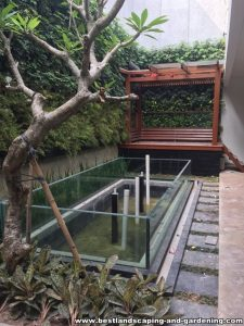 Taman vertikal | Vertical garden