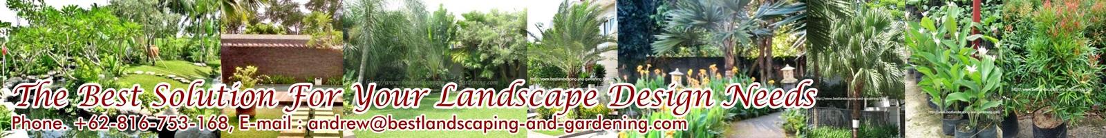 Jasa Desain dan Pengerjaan Taman , Kolam
