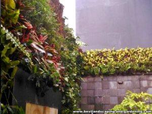 vertical garden dan batu alam